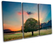 Landscape Tree/Sunset Landscapes - 13-0723(00B)-TR32-LO